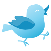 Best Twitter Plugins for WordPress