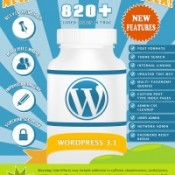 WordPress 3.1 New Features Infographic