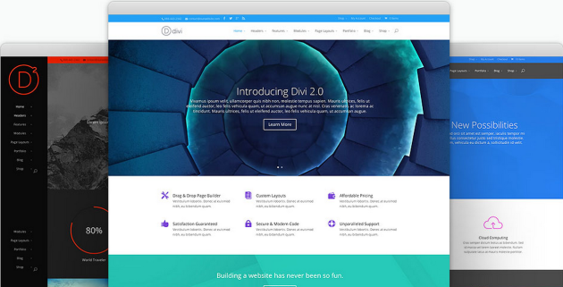 divi-multilingual-theme