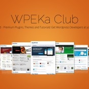 One-Stop Shop for All WordPress Needs - WPEka Club