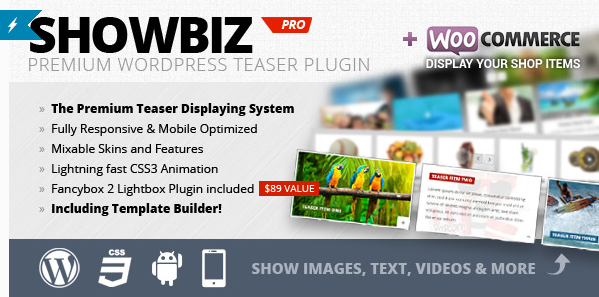 wordpress-sliders-Showbiz