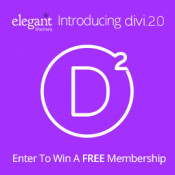Elegant Themes Giveaway Winners Announcement