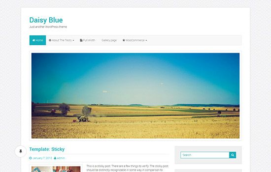 beautiful-WordPress-themes-for-nice-startups11