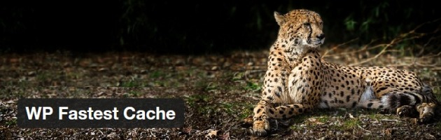 caching-wpfastestcache