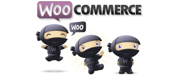 2015-best-plugins-WooCommerce