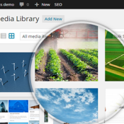 WP Media Folder - Organize Your WordPress Media Files