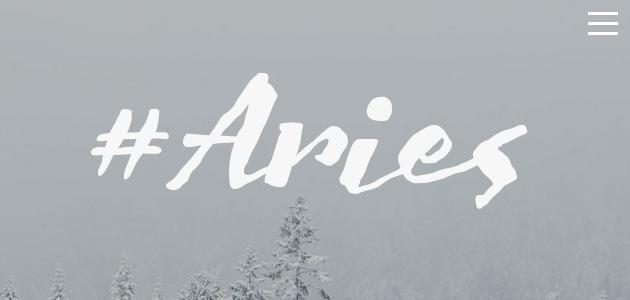 Aries: Diverse Color Scheme WordPress Theme