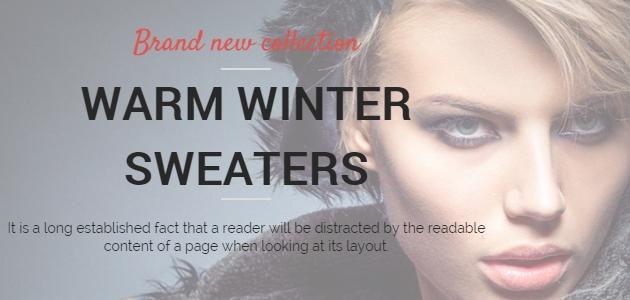 Shopera: Free Minimal ECommerce WordPress Theme
