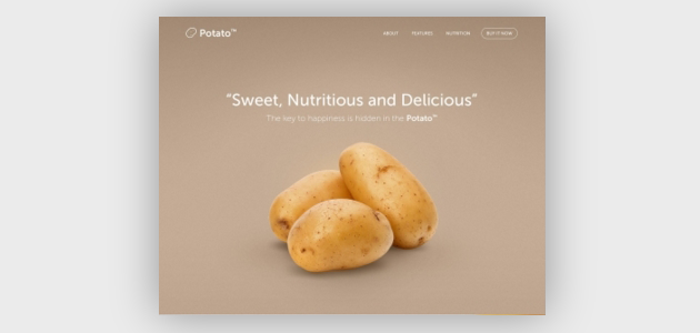 LandingFolio: Best Landing Page Designs for Your Inspiration
