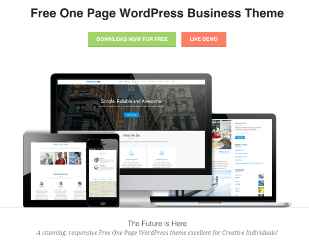 Parallax One WordPress Theme Review