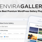 Fantastic Giveaway from Envira Gallery - 2 Envira Gold licenses Up for Grabs