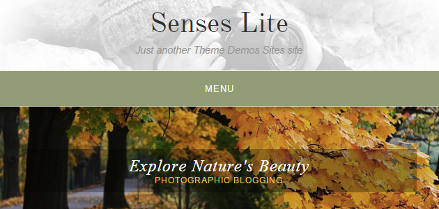Senses Lite: Clean Blogging WordPress Theme