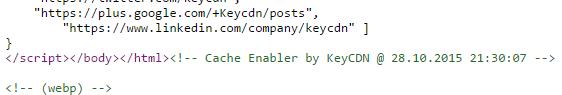 verify cache