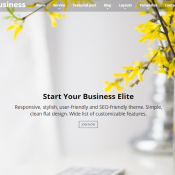 Business Elite Review: One Page WordPress Theme