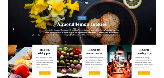 Dyad: Nice Photographic WordPress Theme