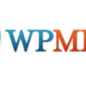 Why Using the WPML Plugin is Your Best Bet for Building a Multilingual Website