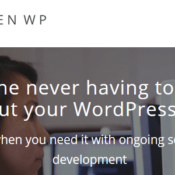 Stop Wasting Time on Technical Stuff: A Look at the WordPress Maintenance Provider Zen WP