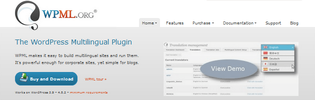 WPML - Multilingual Plugin