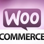 14 Best eCommerce Plugins for WordPress