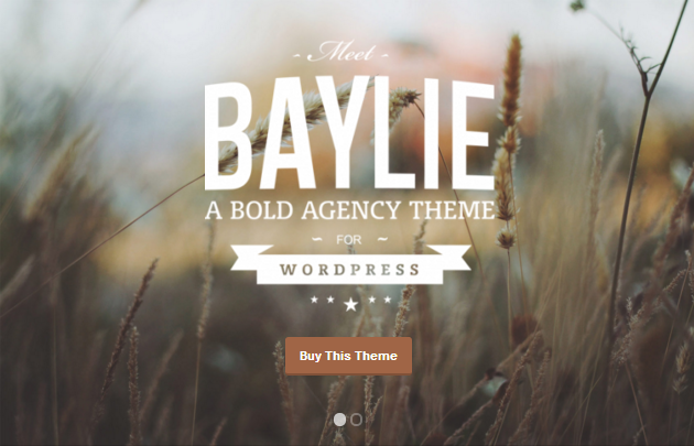 Baylie WordPress Theme