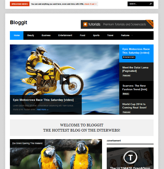 Bloggit - Ad-Space WordPress Themes