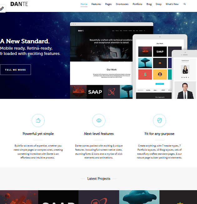 Dante - eCommerce WordPress Themes