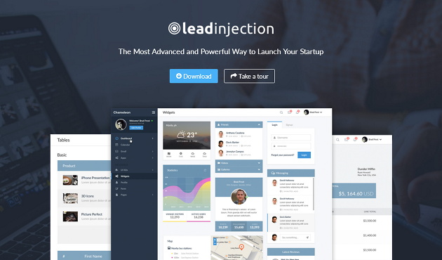 Leadinjection WordPress Theme