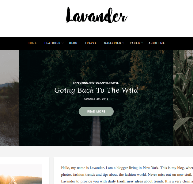 Feminine WordPress Themes - Lavander