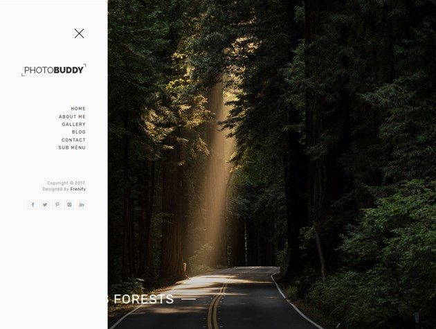 wordpress photogrpaphy theme