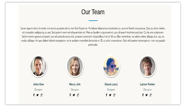 Team section - One Page Business Pro