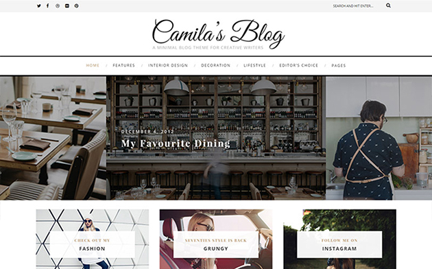 Camila – Minimal Blog WordPress Theme