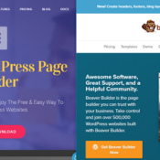 Elementor vs Beaver Builder Page Builder: Which Should You Choose?