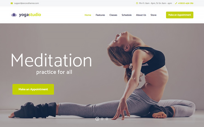 Yogastudio, Gym and Healthcare WordPress Theme