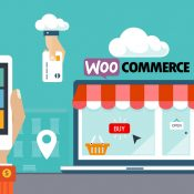 Best WooCommerce Extension Plugin Stores