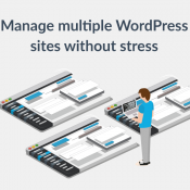 How To Manage Multiple WordPress Sites Efficiently
