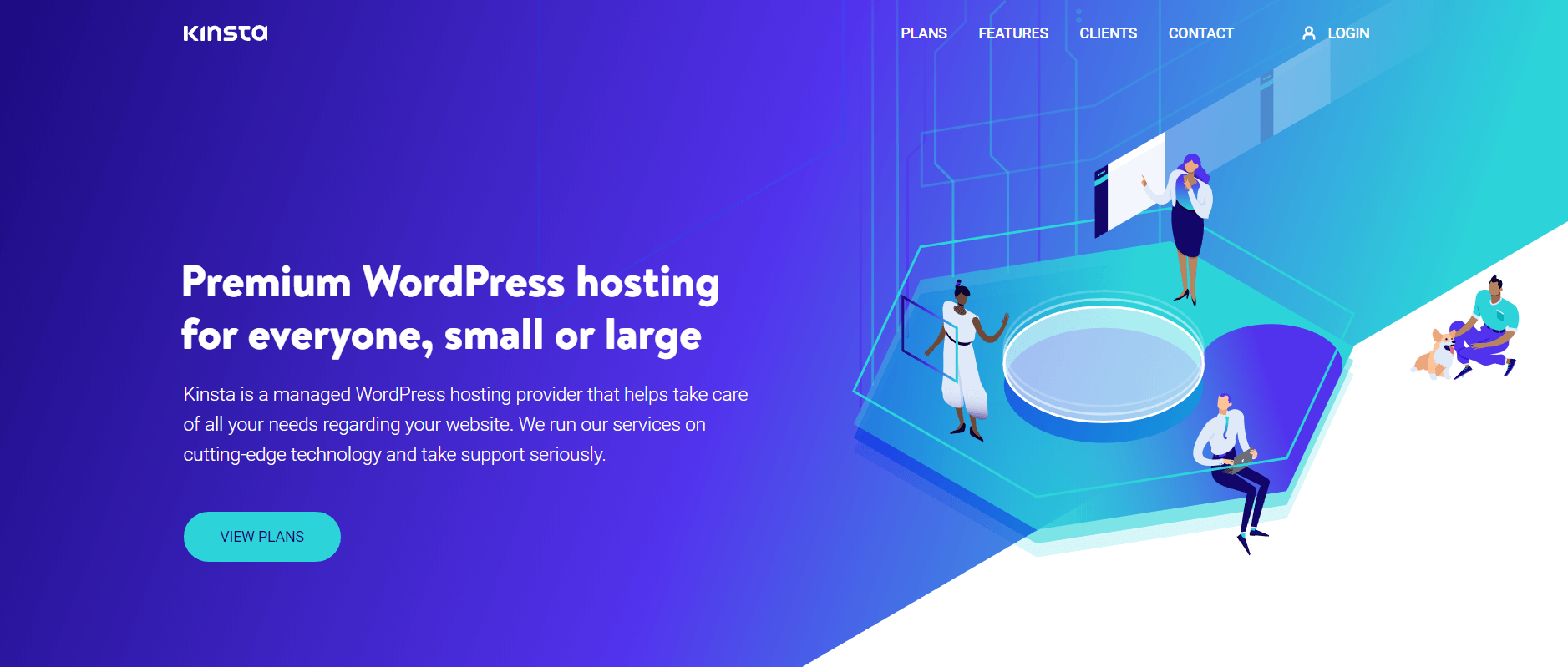 The Kinsta website.