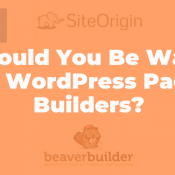 Should You Be Wary of WordPress Page Builders?