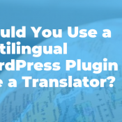 Should You Use a Multilingual WordPress Plugin or Hire a Translator?