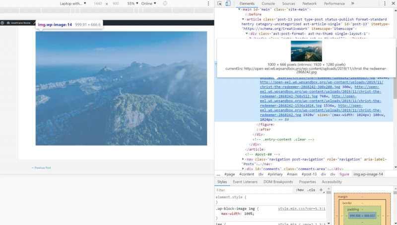 Image URL in source code