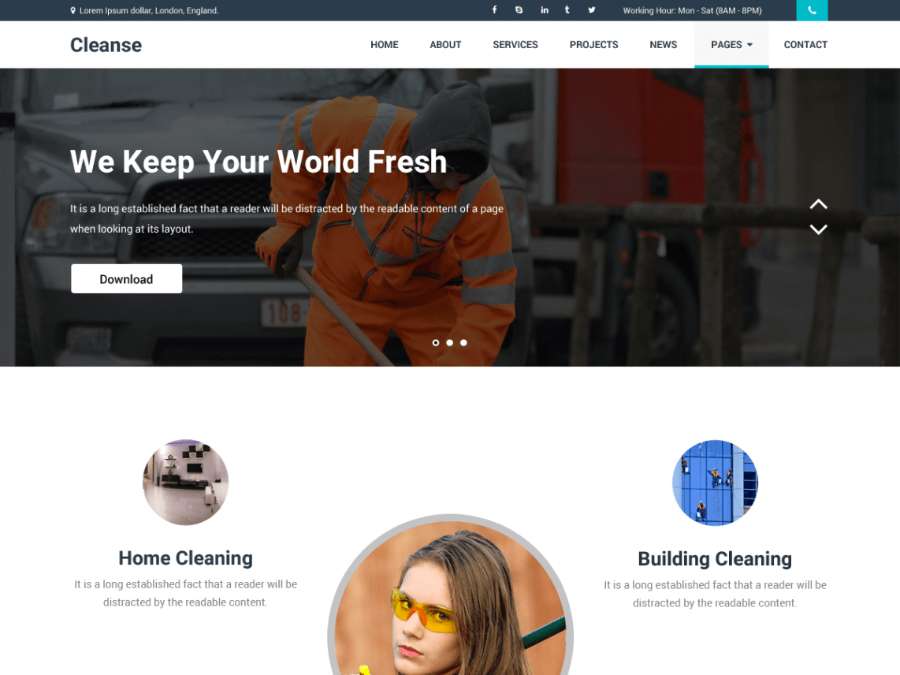 Cleanse WordPress Theme