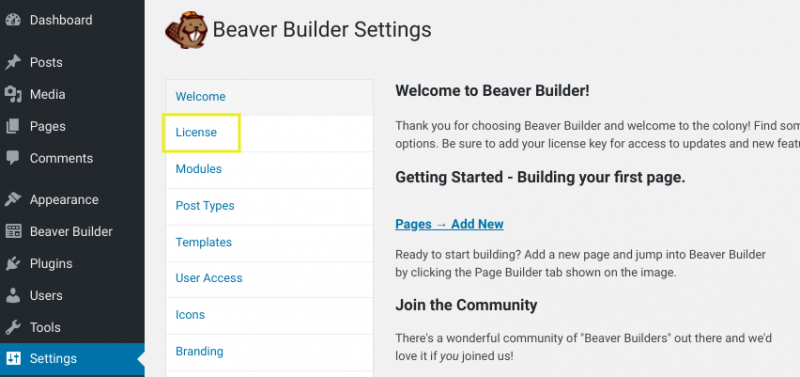 The license tab of the Beaver Builder seplugin settings page.
