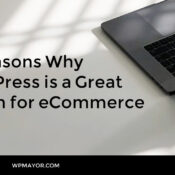 10 Reasons Why WordPress is a Great Option for eCommerce