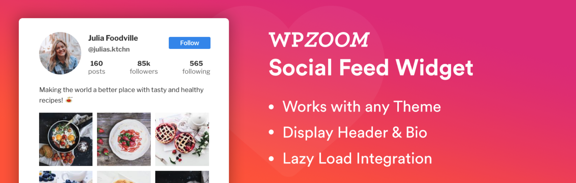 WPZoom Instagram Feed plugin for WordPress