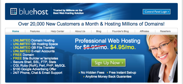 Bluehost web hosting wordpress