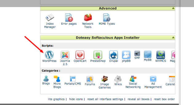 Doteasy SSD Hosting for WordPress Reviewed - WP Mayor