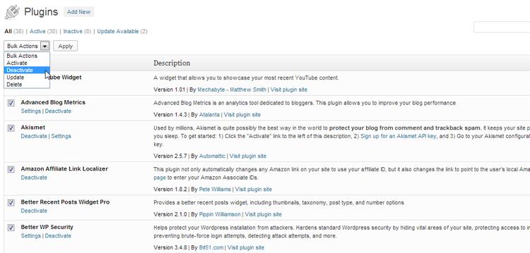 wordpress plugins js not minified