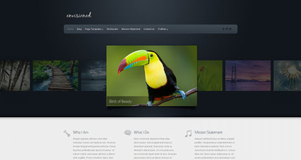 Envisioned travel themes for WordPress