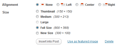 How to Add Custom Image Sizes to WordPress Uploader