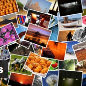 Best Plugins for Using Creative Commons Images in WordPress