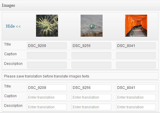 translating-image-titles
